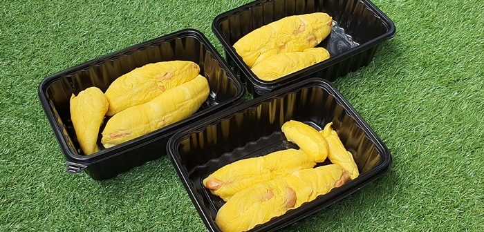 8 Durian – Singapore Online Durian Delivery, Our Parenting World